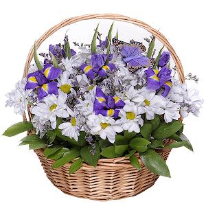 Любимый сюжет +30% цветов с доставкой в Кемерово