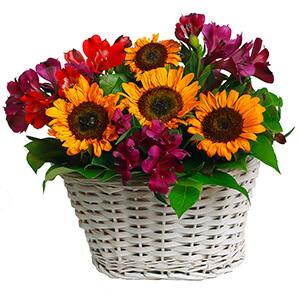 Теплый вечер +30% цветов с доставкой в Кемерово