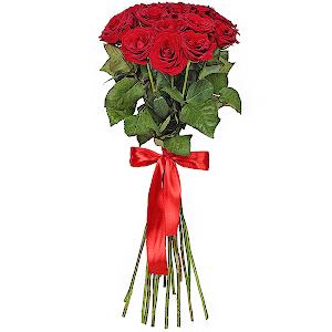 Букет из 15  красных роз - премиум